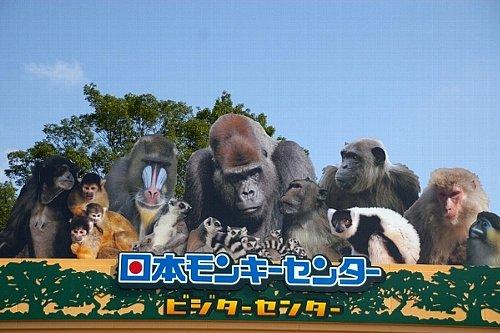日本モンキーセンターって? : ...